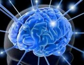 Não điều chỉnh sự cực khoái như thế nào?