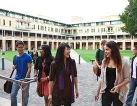 Phỏng vấn trực tiếp cùng một trong tám đại học hàng đầu Australia