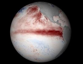 El Nino bất thường gây sức tàn phá lớn nhất trong lịch sử