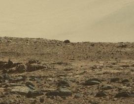 Bức ảnh chuột trên sao Hỏa gây tranh cãi