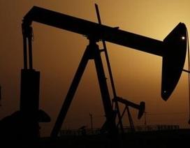 Kịch bản đen tối: Giá dầu có thể rớt xuống 10 USD/thùng?