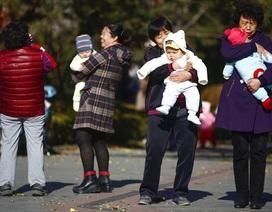Bi kịch xã hội từ chính sách một con tại Trung Quốc