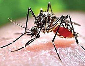 Bệnh sốt xuất huyết - Cách nào phòng tránh