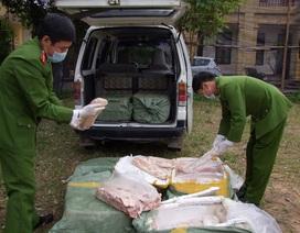 Bắt vụ vận chuyển 450kg nầm lợn hôi thối