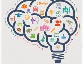 Trắc nghiệm độ khoẻ của bộ não (2)