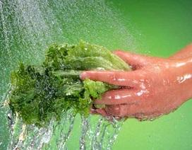 Cần ngăn ngừa bệnh tật đến từ nguồn nước