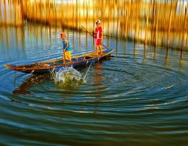 Những trải nghiệm thú vị trên phá Tam Giang