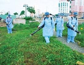 Số mắc sốt xuất huyết ở Hà Nội tăng gần 5 lần