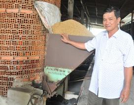 Lãi hơn 1,5 tỷ đồng/năm từ nghề sấy gạo sữa