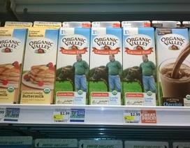 Sữa hữu cơ: Bước đột phá cho thị trường thực phẩm hữu cơ tại Việt Nam