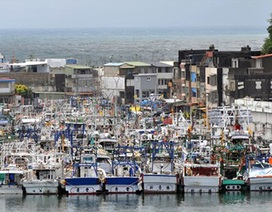 Ba thuyền viên Việt Nam mất tích ngoài khơi biển Nhật Bản