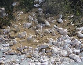 Lật xe container, 31 tấn thức ăn gia súc tràn xuống suối