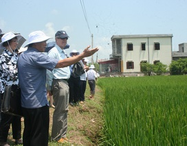 Việt-Mỹ thúc đẩy sáng kiến về biến đổi khí hậu đồng bằng sông Hồng