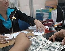 Giá USD sụt giảm kỷ lục