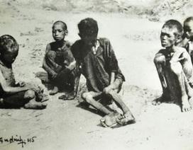 Giới Sử học đã khóc khi thực hiện cuốn sách về nạn đói năm 1945