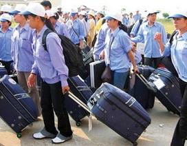 Xuất khẩu lao động: Nhức nhối nạn lừa đảo và bỏ trốn