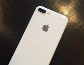 """Apple có thể sẽ giới thiệu iPhone 7 trắng """"Jet White"""" đầu năm 2017"""