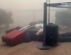 Bên trong sân bay bị tấn công khủng bố ở Bỉ