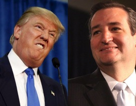 Donald Trump thắng áp đảo tại bang Indiana, đối thủ  Ted Cruz  tuyên bố bỏ cuộc
