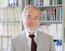 Nhà khoa học Nhật Bản giành giải Nobel Y học