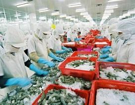 """Người Việt tự đầu độc bằng thực phẩm """"ngậm"""" kháng sinh"""