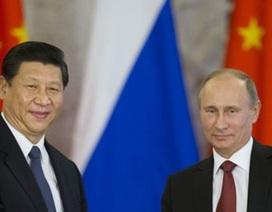 Năm 2016 của Tổng thống Nga Vladimir Putin: Thách thức toàn diện