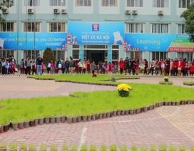 Hà Nội: Học sinh tạo hình bản đồ đất nước với gần 10.000 chậu lúa non