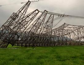 Giám định mẫu bê tông tại cột điện đường dây 500 kV bị đổ