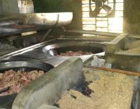 """Hàng tấn mỡ bẩn chế biến gần nhà vệ sinh ở Đà Nẵng """"trôi"""" về đâu?"""