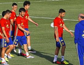 Tuyển Tây Ban Nha luôn thất bại khi có CLB vô địch Champions League