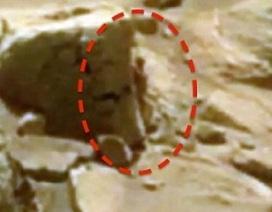 Phát hiện sinh vật giống người trên sao Hỏa?