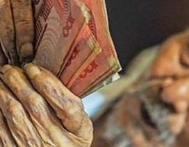 Cụ ông 103 tuổi, nằm liệt giường vẫn nghiện... đếm tiền