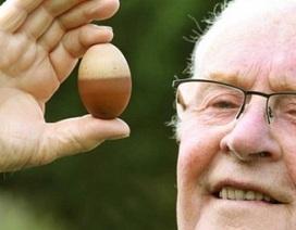 Quả trứng gà hai màu độc nhất vô nhị ở Anh