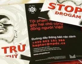 Mafia gốc Việt thống trị thế giới ngầm ma túy Trung Âu