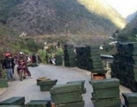 """""""Cuộc chiến"""" ong nội - ong ngoại: Chuyện lạ ở cao nguyên đá Đồng Văn"""