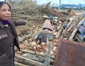Chủ tịch TP Lào Cai ra công văn khẩn vụ thu hồi đất của dân không một đồng bồi thường