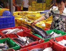 Cá biển bán ở TP.HCM: Có an toàn không?