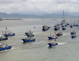 Trung Quốc giảm đội tàu cá vì đánh bắt quá mức làm cạn kiệt nguồn thủy sản