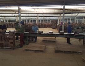 Bắc Giang: Hơn 100 công nhân thấp thỏm trước nguy cơ thất nghiệp ngay sát Tết