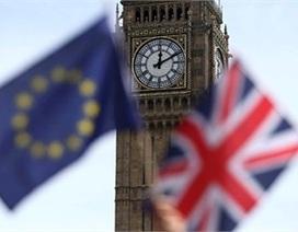 Vì sao dân Anh muốn rời EU?
