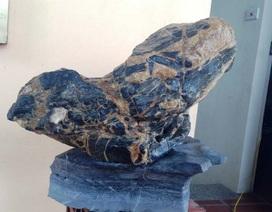 Nam Định: Hòn đá 50 nghìn đồng giờ được trả tiền tỷ