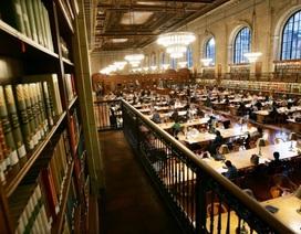 Harvard, bốn rưỡi sáng