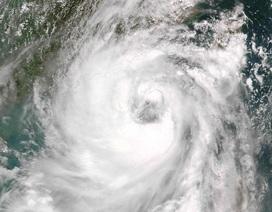 Bão Nida đổ bộ, miền nam Trung Quốc cảnh báo bão mức cao nhất