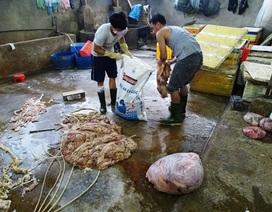 Mỗi ngày bán 200 ký nội tạng bò ngâm hóa chất ra thị trường