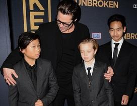 Brad Pitt không có ý định hàn gắn hôn nhân với Angelina Jolie