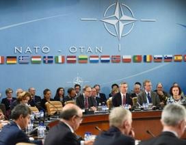 Thượng đỉnh NATO - phép thử sự đoàn kết của phương Tây