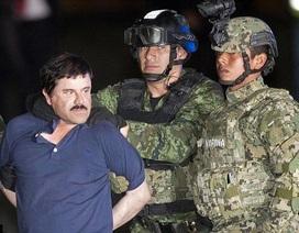 Trận chiến cuối đời của El Chapo