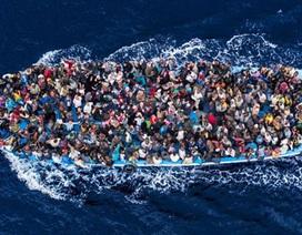 Sự thật khủng khiếp về nạn buôn bán nội tạng người di cư