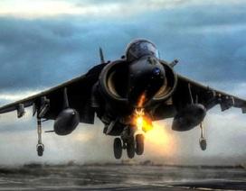 Cường kích AV-8B Harriers tham gia chiến dịch không kích chống IS