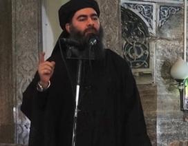 Sau bin Laden, Giám đốc CIA hy vọng thủ lĩnh IS sẽ sớm bị tiêu diệt
